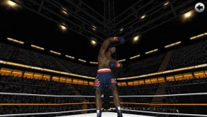 Boxing - Road To Champion images3